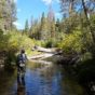Kern River Fly Fishing Report 09/11/2016