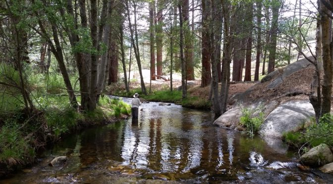 Kern River Fly Fishing Report May 25, 2017