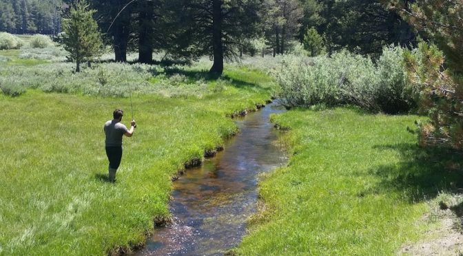 Kern River Fly Fishing Report July 2, 2017