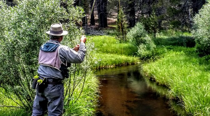 Kern River Fly Fishing Report July 11, 2017