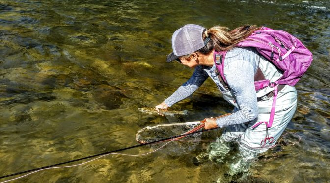 Kern River Fly Fishing Report October 10, 2017