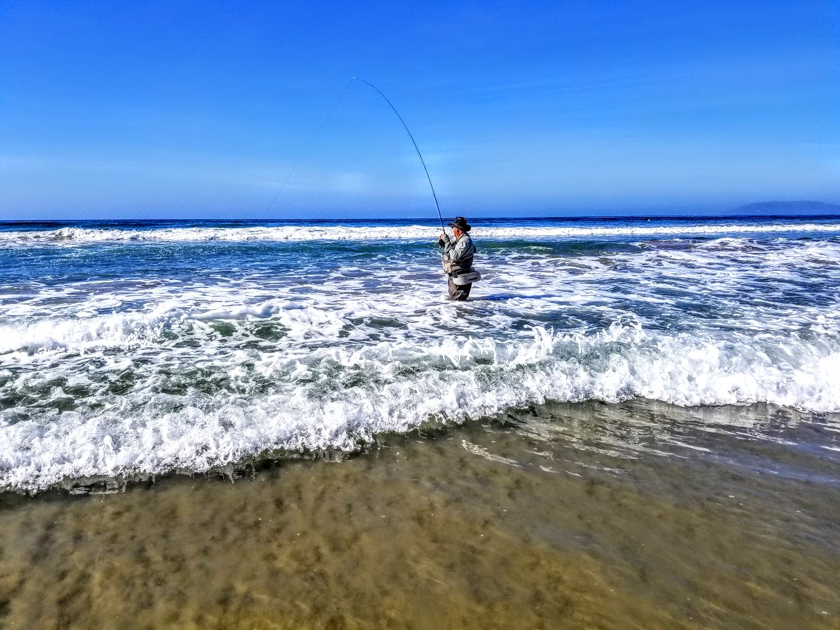 Kern river fly fishing reports your source for southern for Surf fishing southern california