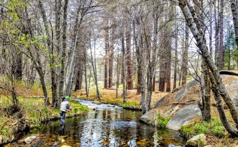 Kern River Fly Fishing Report May 14, 2018