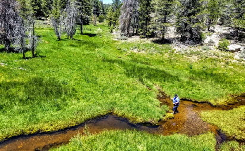 Kern River Fly Fishing Report- July 3, 2019 – Kern River Fly