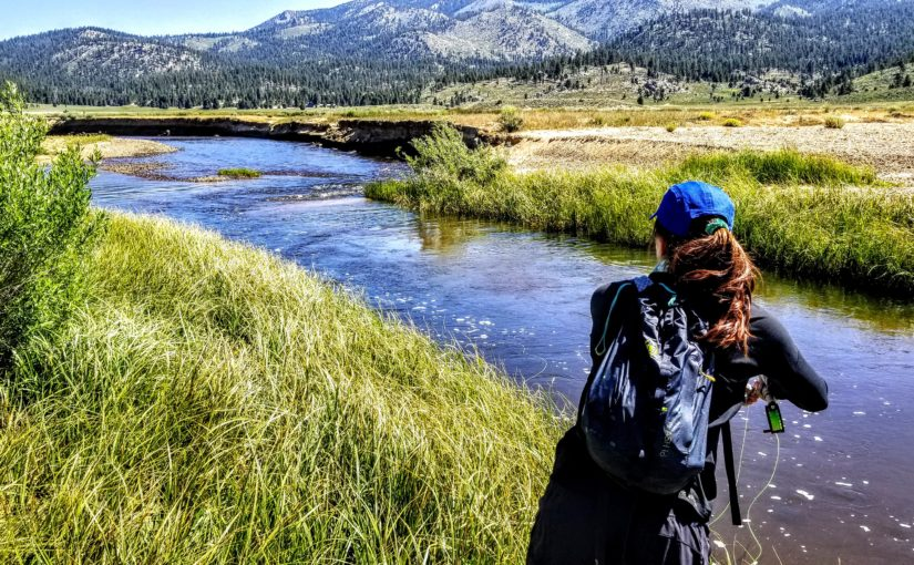 Kern River Fly Fishing Report July 22, 2019