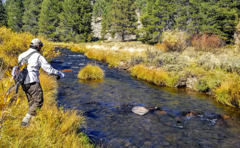 """Kern River Fly Fishing Report October 1, 2019 for """"Free Subscribers"""""""