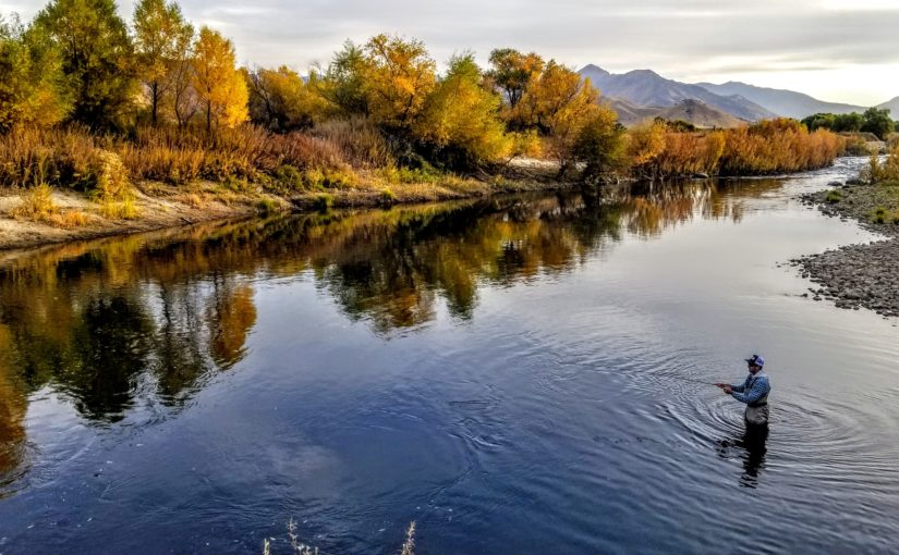 """Kern River Video Fly Fishing Report for """"Free Members"""""""
